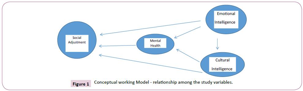 psychopathology-Conceptual-working-Model